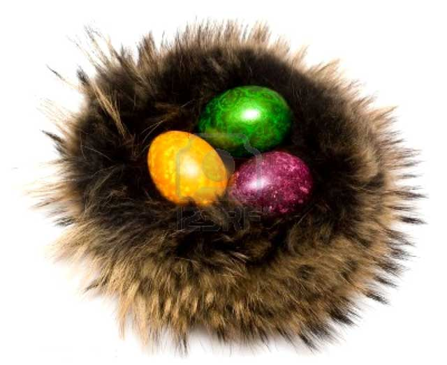 Easter-eggs-in-a-fur-nest